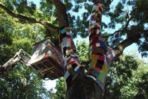Habiller-un-arbre